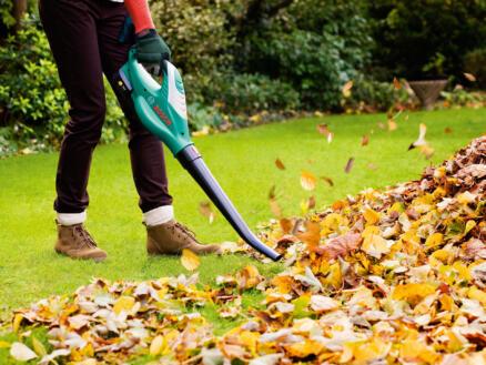 Bosch ALB Li 18 souffleur de feuilles sans fil batterie non comprise