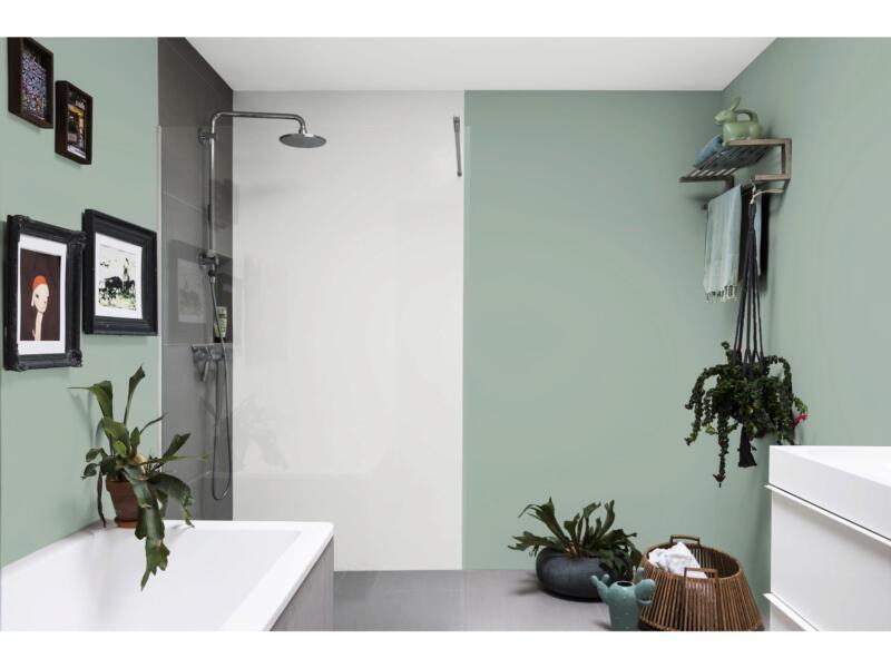 Levis Ambiance muurverf extra mat 1l eucalyptus