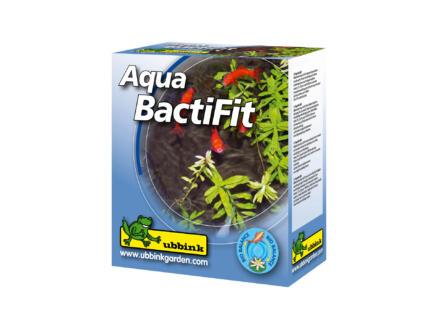 Ubbink Aqua Bactifit 20x2 g