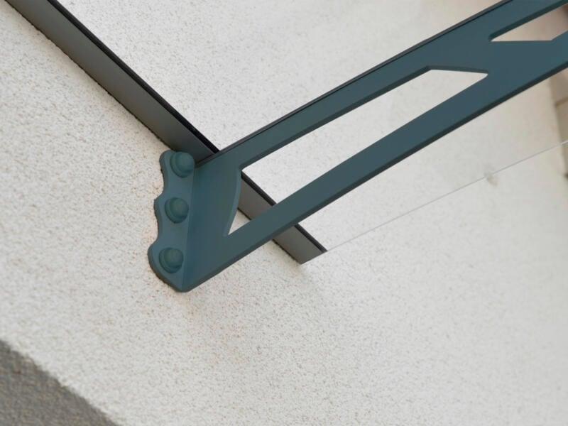 Palram Aquila 1500 marquise de porte 150,5x91,5 cm transparent/gris foncé