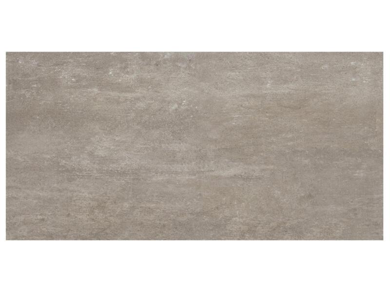 Ardesia carreau de sol 30x60 cm 0,72m² gris