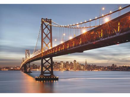 Bay Bridge 8733 fotobehang 8 stroken