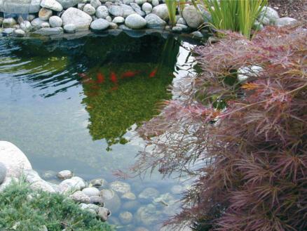 BioPure 2000 Basic filtre subaquatique 1200l