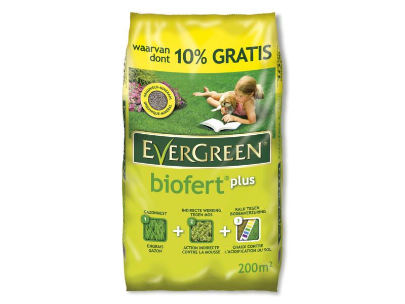 Evergreen Biofert Plus engrais 18kg + 2kg gratuit