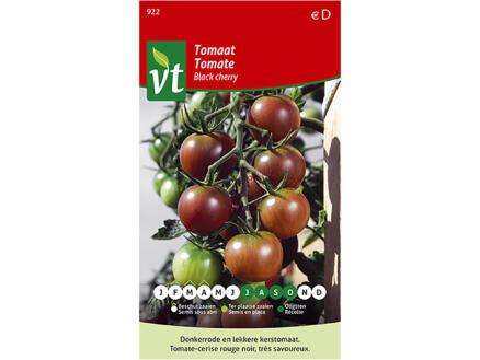 Black Cherry tomaat
