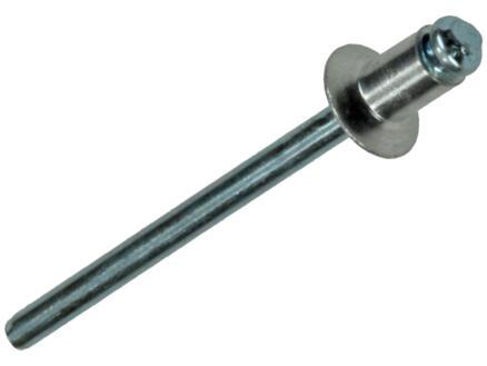 Sam Blindniet 4x6 mm aluminium 40 stuks