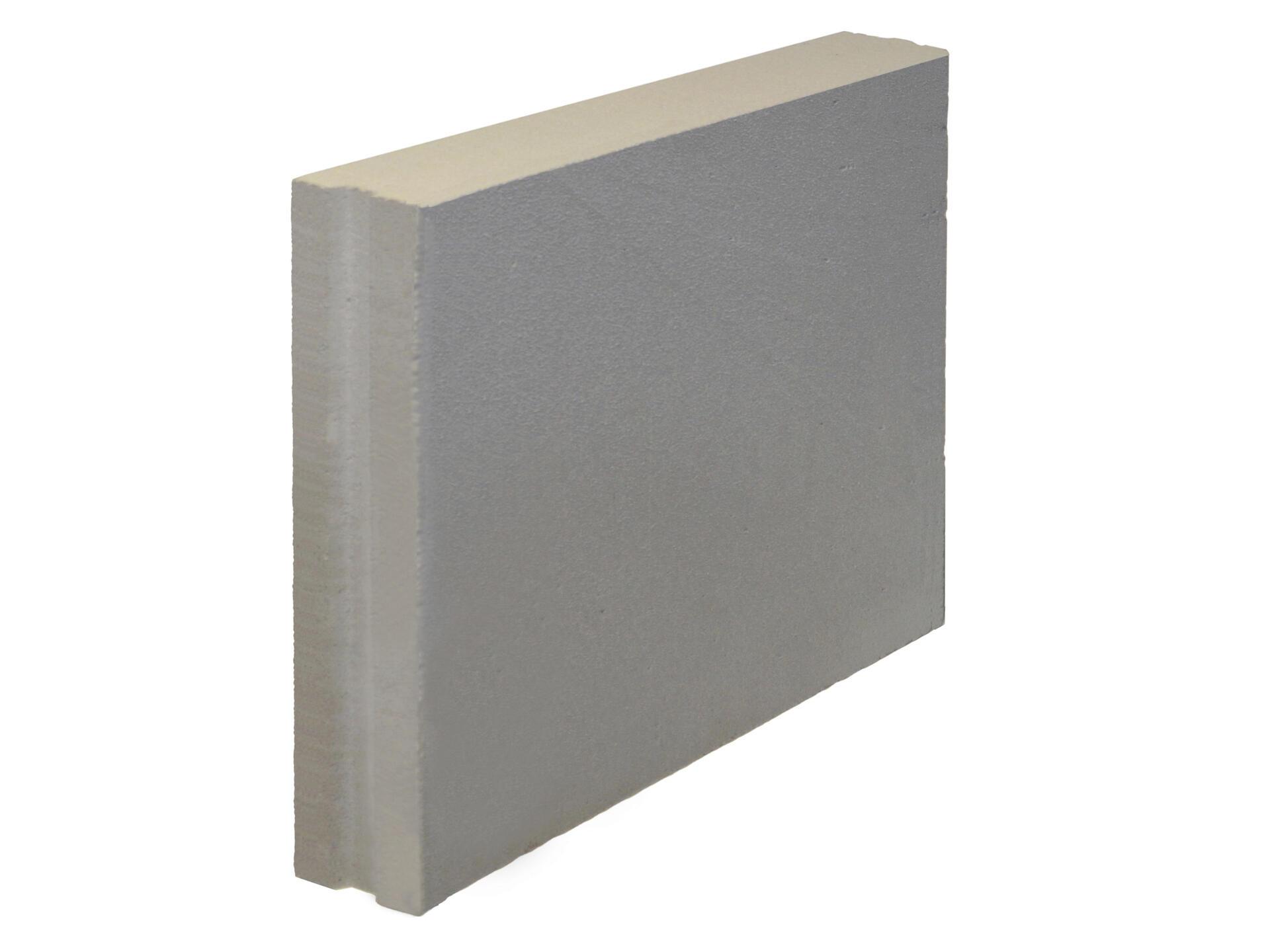 Ytong Bloc en béton cellulaire 60x10x50 cm rainuré et languetté