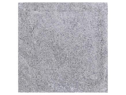 Bluestone dalle de terrasse 40x40x2,5 cm 0,16m² bouchardé pierre bleue