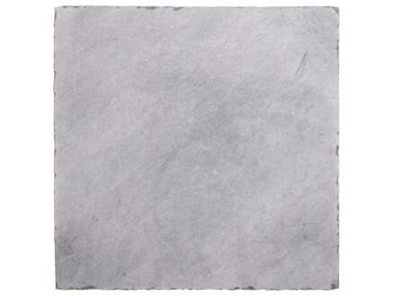 Bluestone dalle de terrasse 40x40x2,5 cm 0,16m² tambouriné pierre bleue