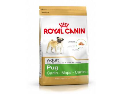 Royal Canin Breed Health Nutrition Carlin croquettes chien 3kg