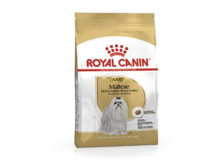 Royal Canin Breed Health Nutrition Maltese Adult hondenvoer 1,5kg