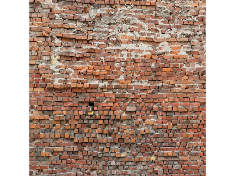 Bricklane intissé photo 5 bandes