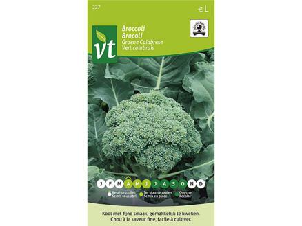 Brocoli vert Calabrais bio
