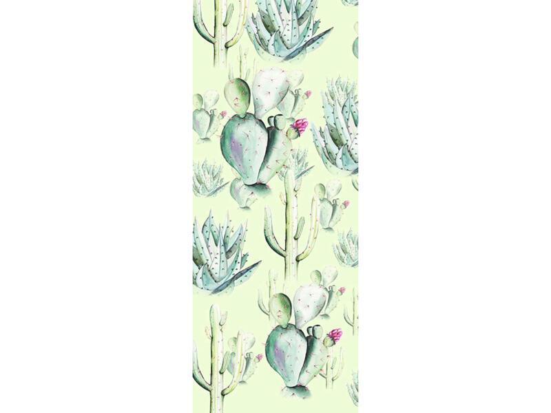 Cactus Grey Panel intissé photo numérique