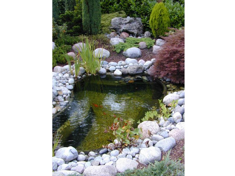Calmus SI bassin de jardin 145l