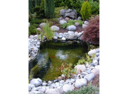 Calmus SIII bassin de jardin 350l