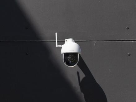 Chacon Caméra IP dôme extérieure avec wifi