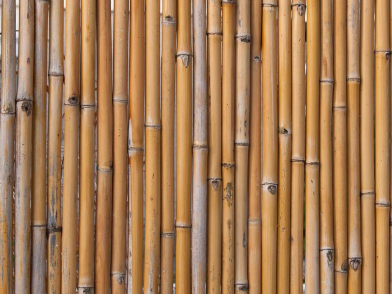 Canisse brise-vue en bambou 180x180 cm