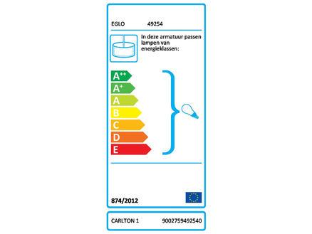 Eglo Carlton 1 hanglamp E27 max. 60W zwart