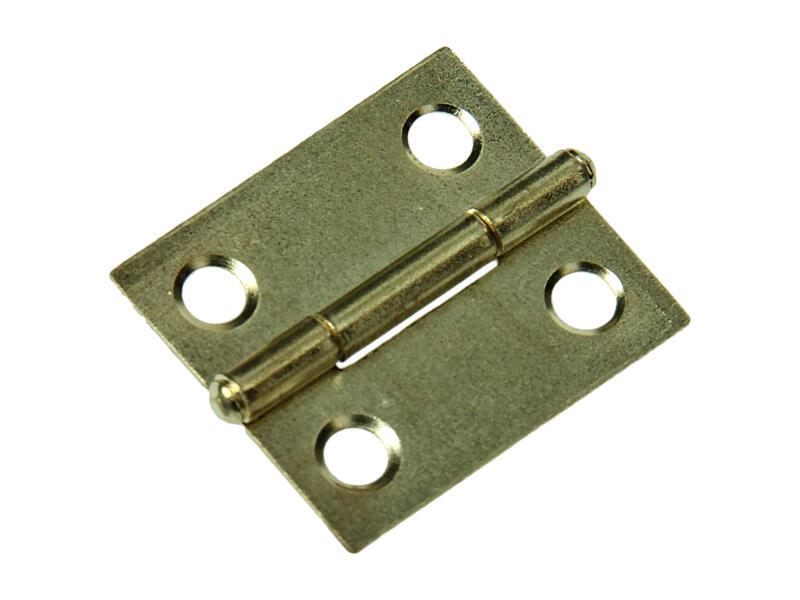 Charnière étroite 3x1,9 cm