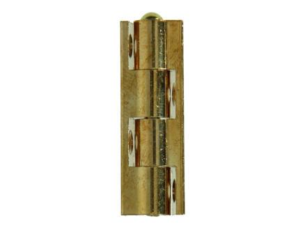 Charnière universelle 5cm