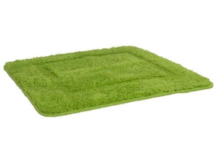 Differnz Classico tapis de bain 60x60 cm vert