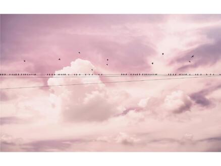 Cloud Wire intissé photo numérique 4 bandes