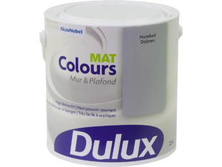 Dulux Colours muur- en plafondverf mat 2,5l hunebed