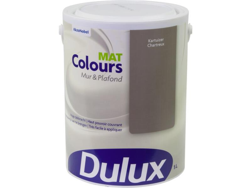 Dulux Colours muur- en plafondverf mat 5l kartuizer