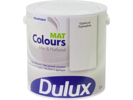 Dulux Colours peinture mur & plafond mat 2,5l gypsophile
