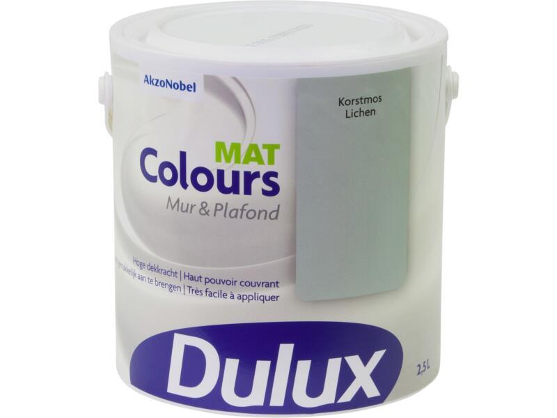 Dulux Colours peinture mur & plafond mat 2,5l lichen