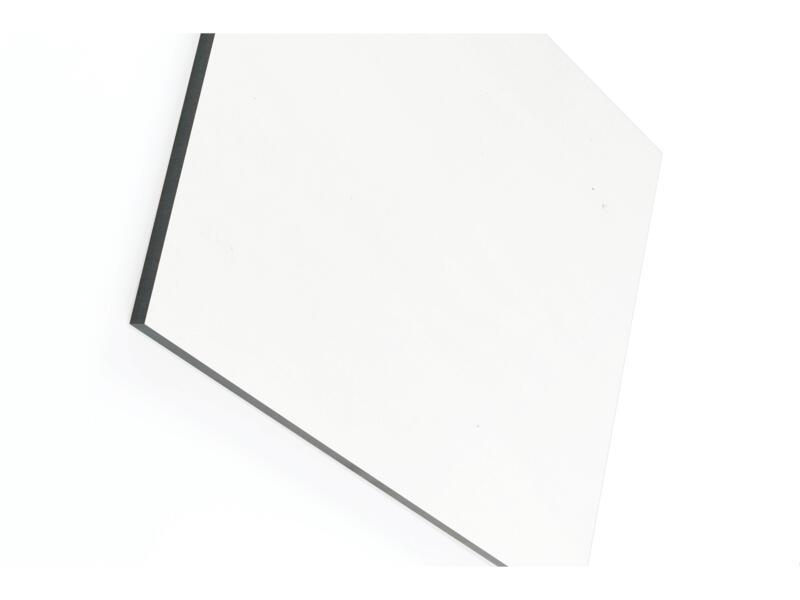 Compactplaat 305x130 cm 6mm beige