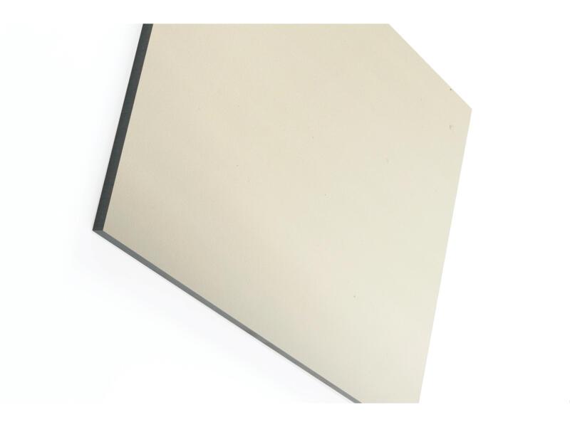 Compactplaat 305x130 cm 6mm grijs beige