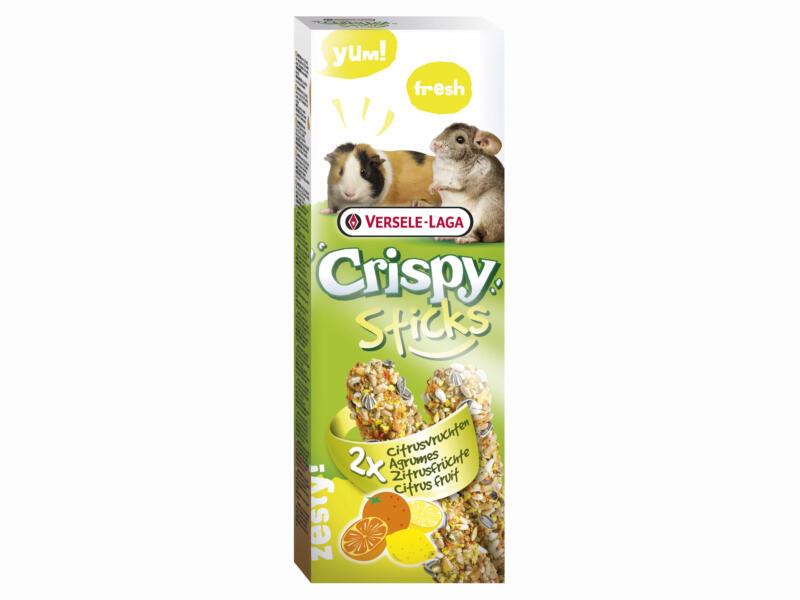 Crispy Sticks sticks à ronger cobayes & chinchillas agrumes 2 pièces