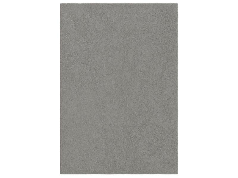 Delight Cosy vloerkleed 120x170 cm grijs