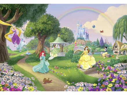 Disney Princess Rainbow papier peint photo 8 bandes