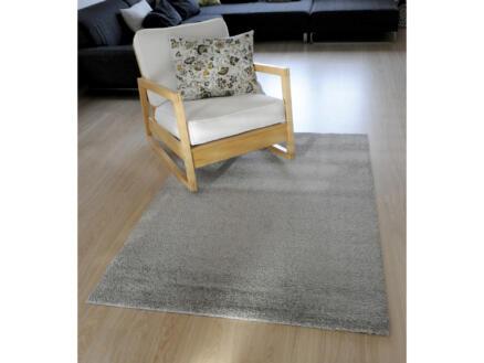 Dolce tapis 160x230 cm gris clair
