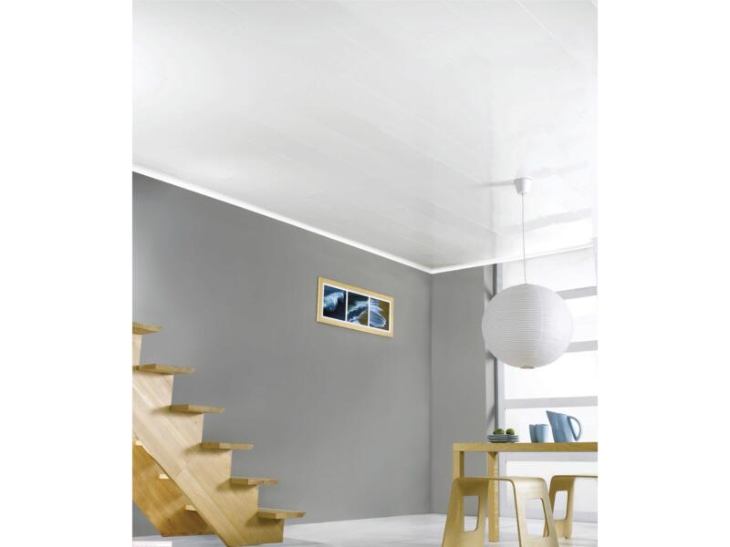 Dumaplast Dumaclip panneau mur et plafond 120x25 cm 2,4m² blanc