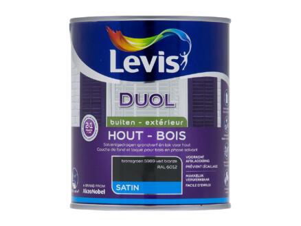 Levis Duol laque bois satin 0,75l vert bronze