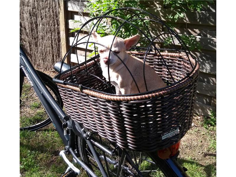 Maxxus EasyFix fietsmand voor hond 38x32x45 cm bruin