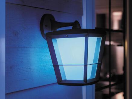 Philips Hue Econic LED wandlamp 15W lage lantaarn dimbaar zwart