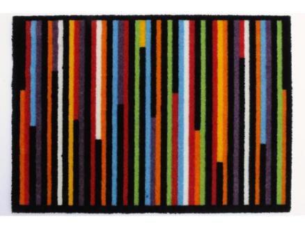 Elegance voetmat lijnen 50x70 cm