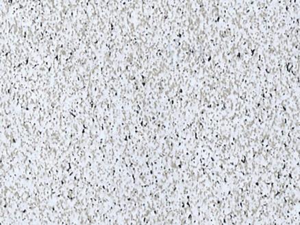 FinFIX Film adhésif 45cm x 2m Granit gris clair