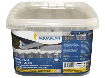 Aquaplan Fixe-Tuile mortier de réparation anti-tempête 4 x 0,25m gris