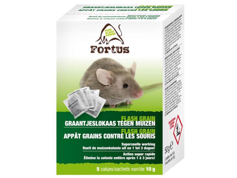 Fortus Flash Grain muizenvergif 50g