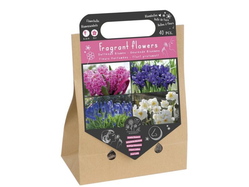 Geurende Bloemen bloembol 40 stuks
