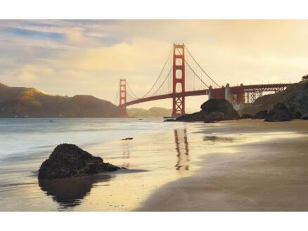 Golden Gate intissé photo numérique 4 bandes