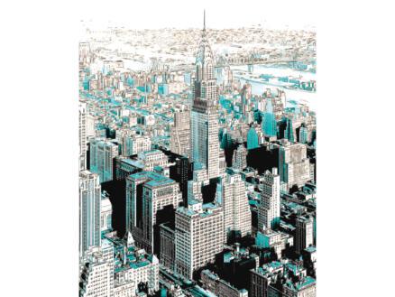 Gotham intissé photo 4 bandes