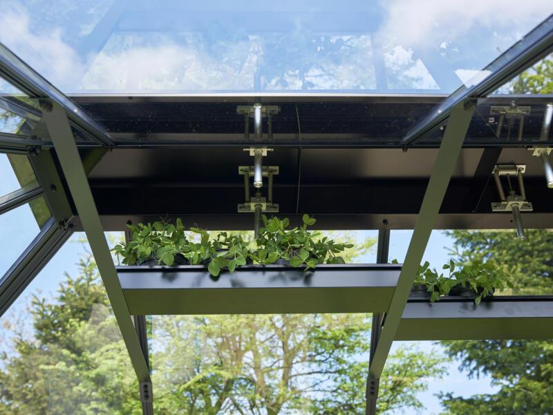 Juliana Grand Oase 130 serre de jardin verre de sécurité anthracite
