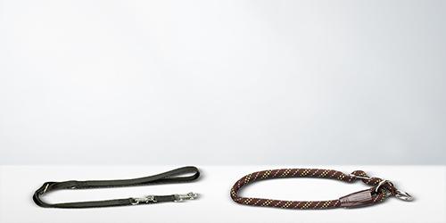 Halsbanden & looplijnen